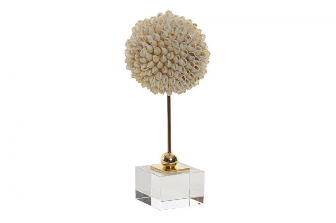 Decoratief Object Shells - H22 CM