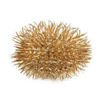Decoratief Object Zee egel - Goudkleurig - Ø 8 cm